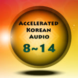 Accelerated Korean II – Lesson 8~14